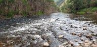 The Cox River