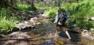 Walking up Lannigans Creek