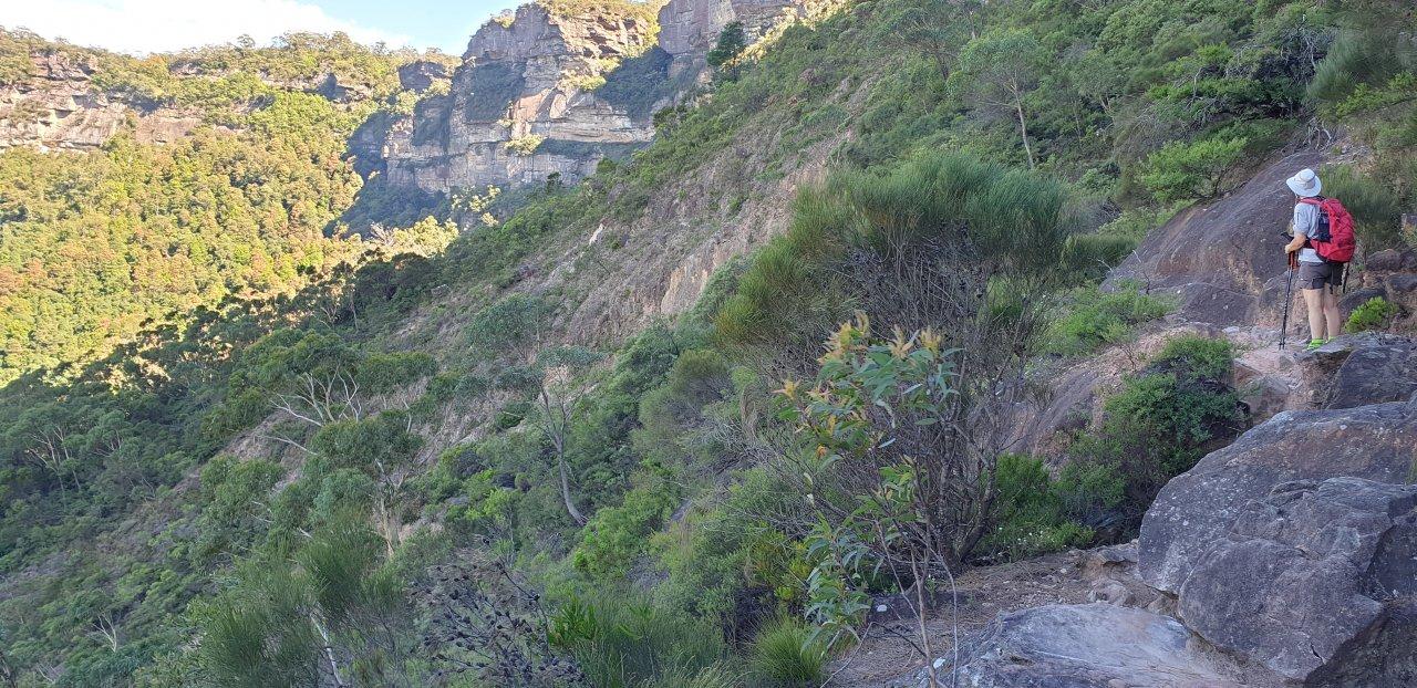 Fern Bower - Dardanelles Pass - Ruined Castle Return