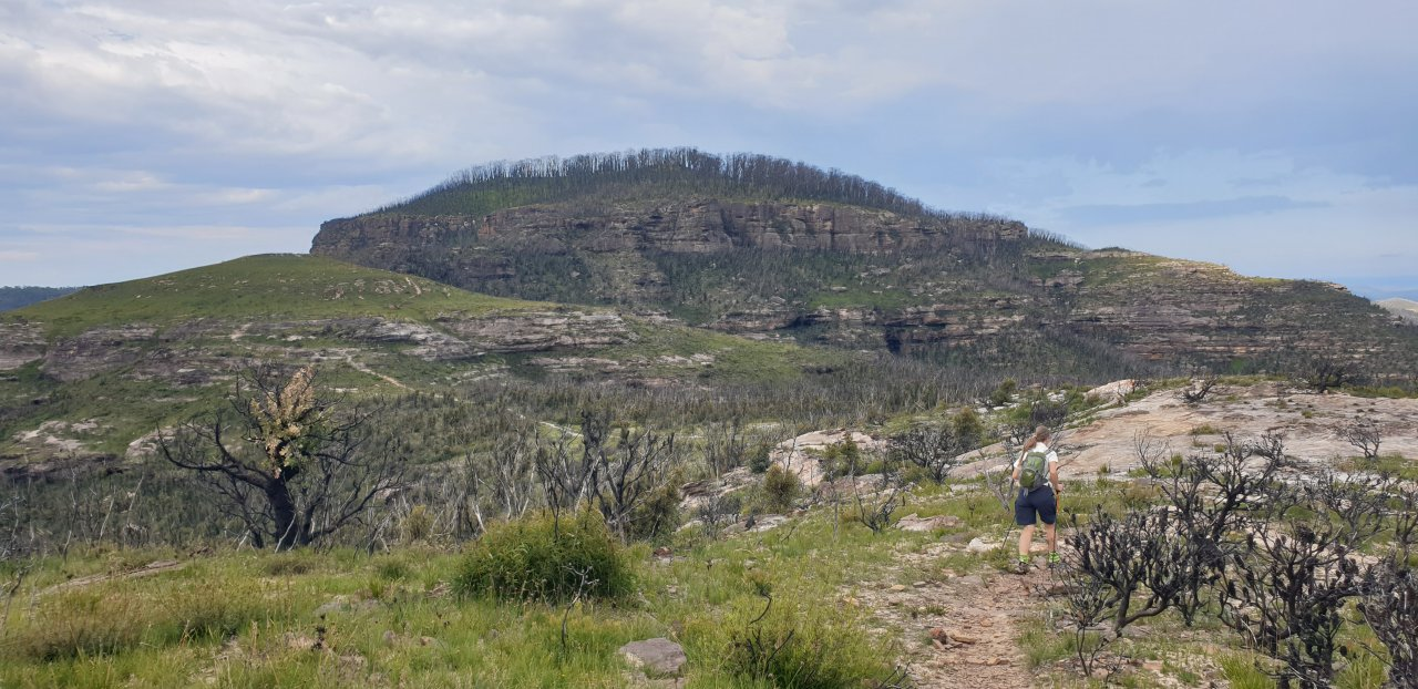 Mt Hay - Butterbox Point Loop